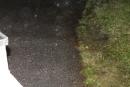 20130622-sonnwendfeuer-36